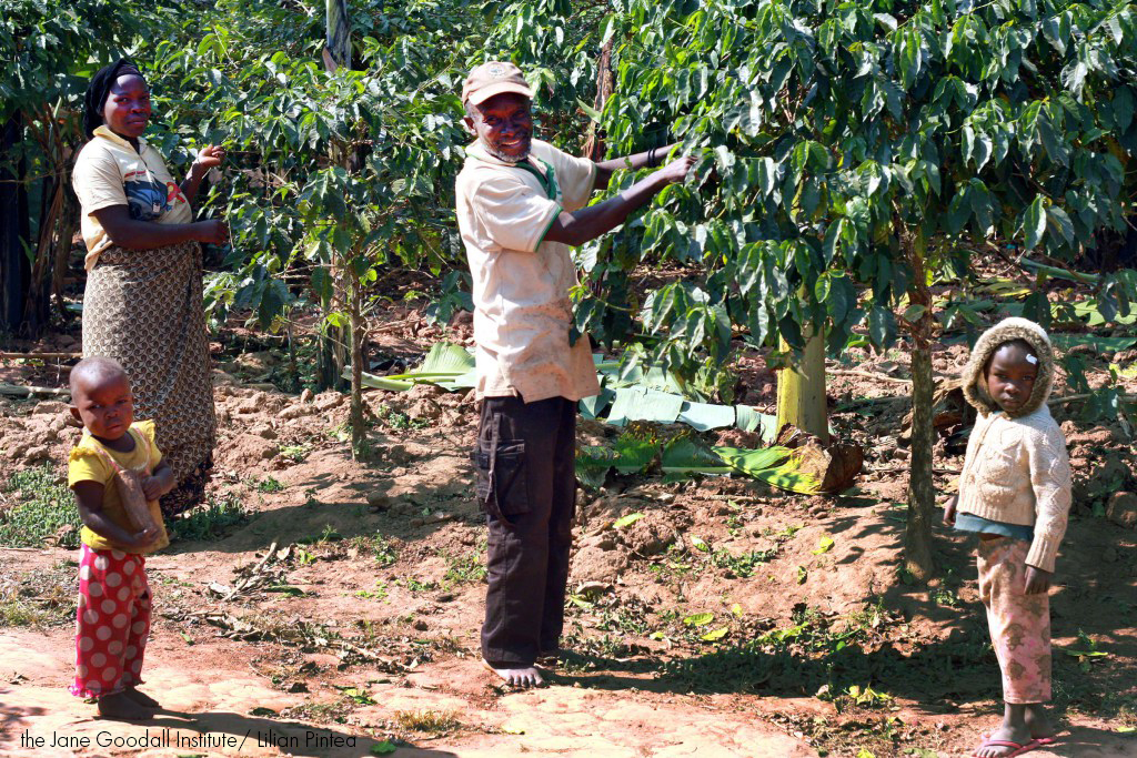 Coffee growers