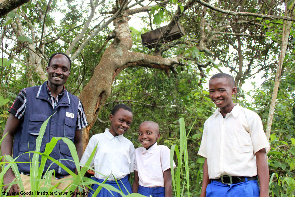 Roots & Shoots students in Tanzania showing a bee hive at their school